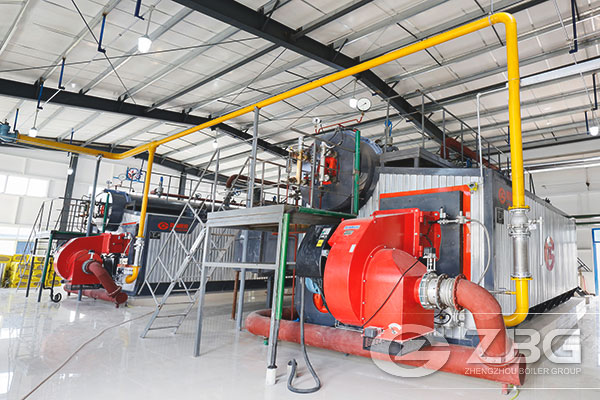 ZBG Low Nitrogen Boilers Attract More Attention