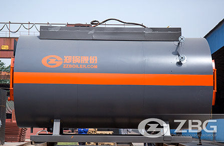 WNS Gas Hot Water Boiler